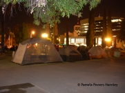 Occupy encampment in Armory Park-- before it was cleared out in the middle of the night by Tucson Police.