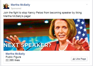 Martha McSally Wants to Go to Washington to Do... Nothing?
